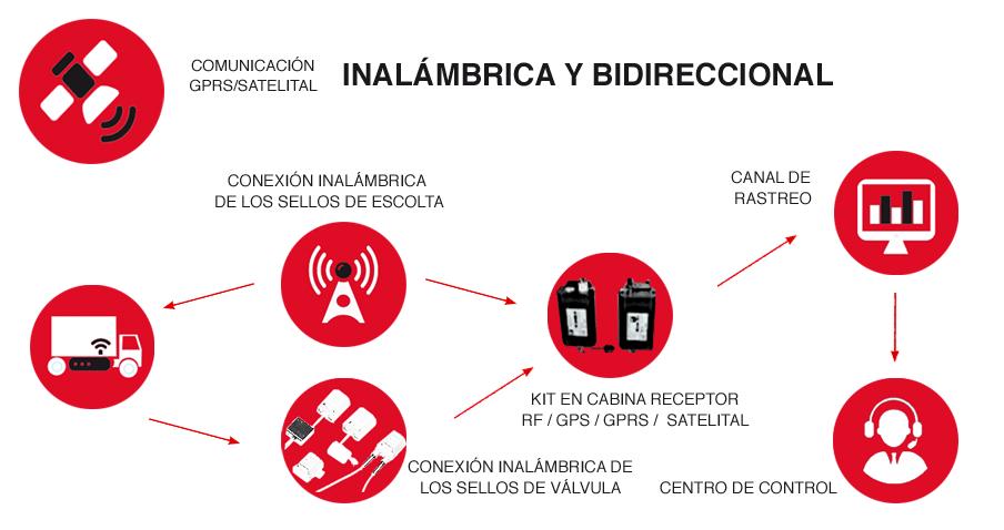 infografia-Precintos